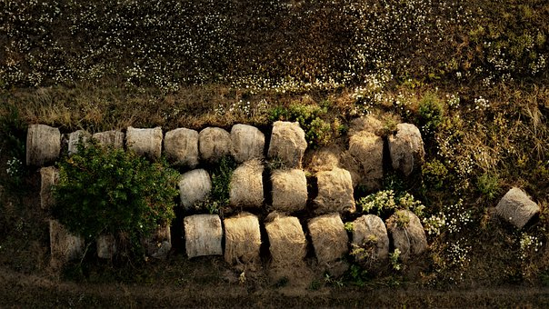 Straw Bales, Abandoned, Flower Meadow, Forget, Nature