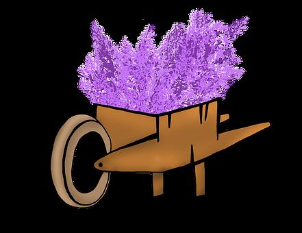 Lavender, Cart, Round, Lavender Bundle, Purple, Bloom