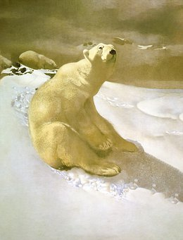 Polarbear, Bear, Snow, Cartoon