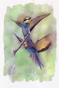 Humming Birds, Flying, Nature, Animal, Painting