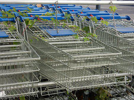 Shopping, Cart, Supermarket, Plant, Growing, Trolley