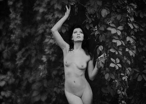 Woman, Naked, Forest, Nude, Model, Body, Erotic, Girl