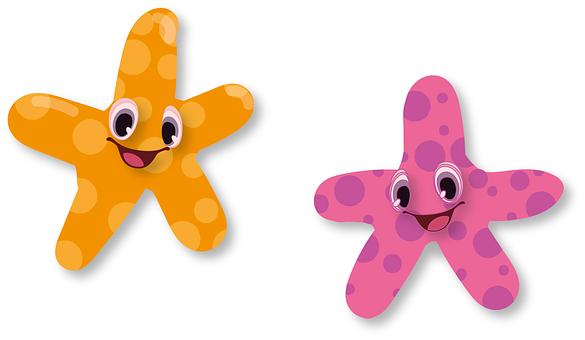 Starfish, Aquarium, Star, Maritime