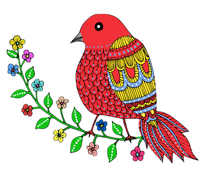 Bird, Drawing, Colorful