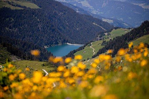 Landscape, Mountain, Lake, Flowers, Savoie, Dam, France