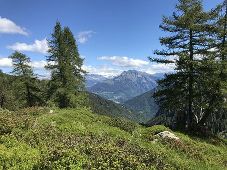 Towards The Top Of The Cugn, Alpine Route, Alps, Alpine