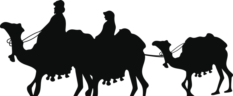Camels, Silhouette, Desert, Trader, People, Sahara