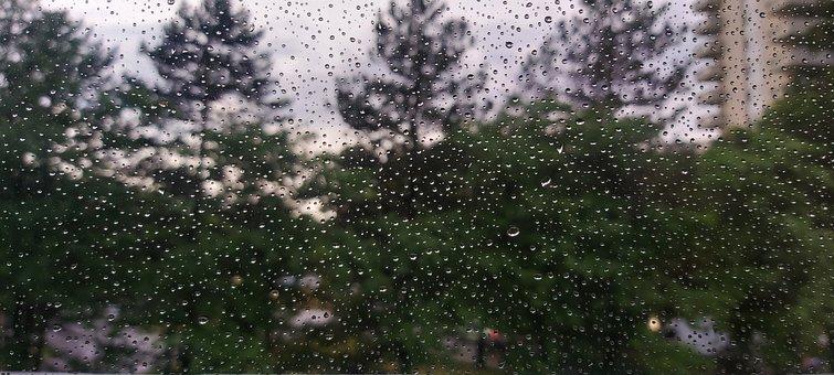 Rain, Drops, Water, Window