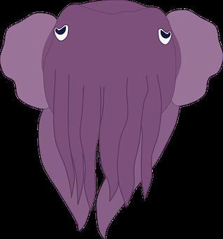 Octopus, Squid, Fish, Mollusk, Aquatic, Animal, Marine