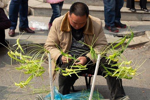 Handcraft, Grasshopper, Traditional, Bamboo, Craft
