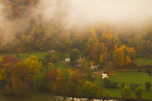 Foliage, Fall, West Virginia