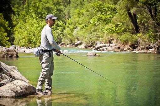 Fishing, River, Man, Water, Angler, Green, Nature