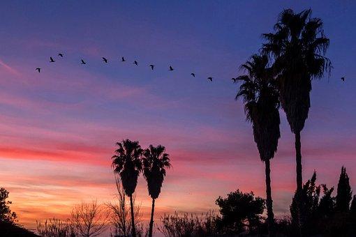 Sunset, Sky, Nature, Warmth, Landscape, Dusk, Horizon