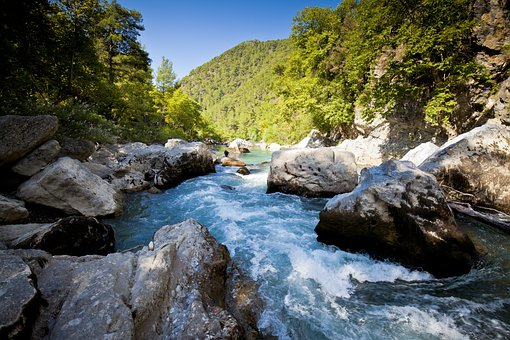 Water, Rapids, River, Waterfall, Landscape, Forest