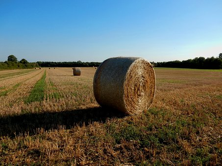 Evening, Agriculture, Field, Bale, Sunset, Shadow