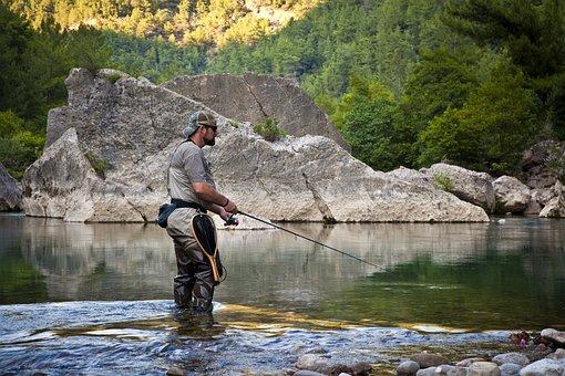 Fisherman, Fishing Rod, Angler, River, Water, Fish