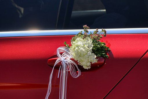 Wedding, Celebrate, Romantic, Love, Decoration, Before