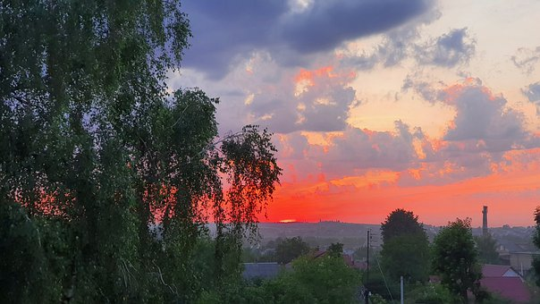 Sky, Clouds, Sunset, Sun, Trees, Leaves, Evening
