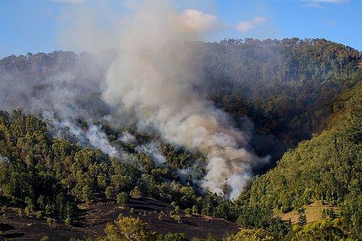 Fire, Smoke, Bushfire, Bush, Trees, Wildfire, Hills