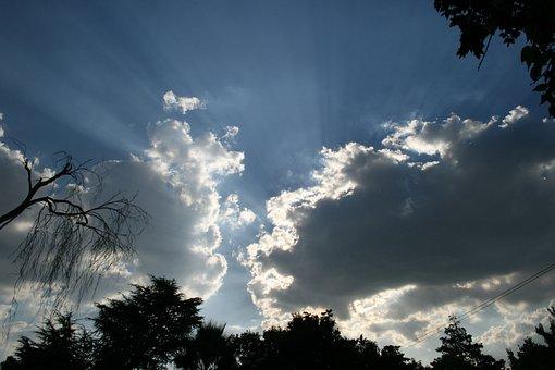 Sky, Clouds, Foliage Silhouette