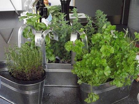 Herbs, Herb, Spice, Delicious, Mediterranean, Food