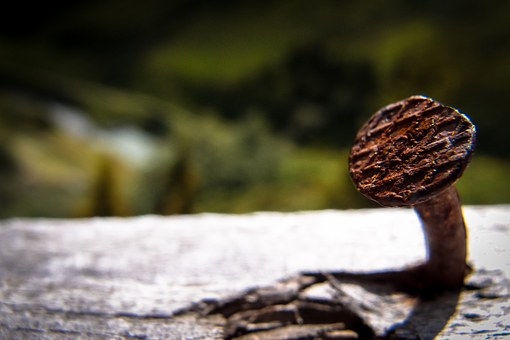 Nail, Wood, Rusty Nage, Nails, Tinker, Fence, Nature