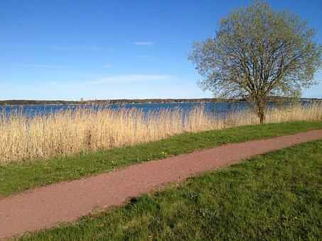 Nature, Path, Landscape, Aland Islands