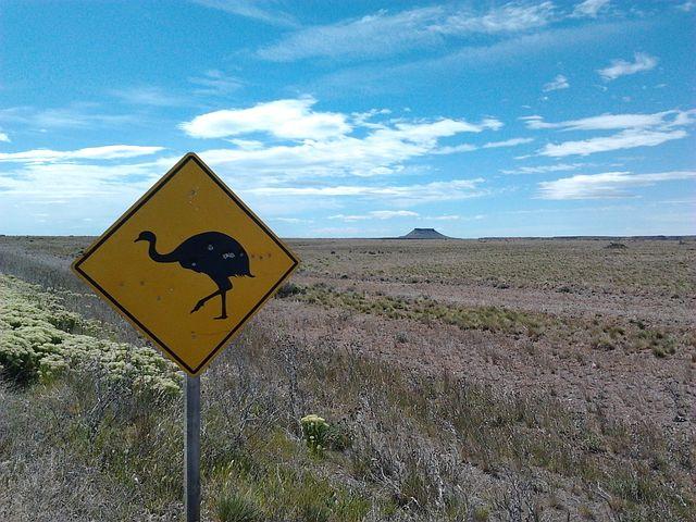 Steppe, Patagonia, Signal Transit, Truncated Peak