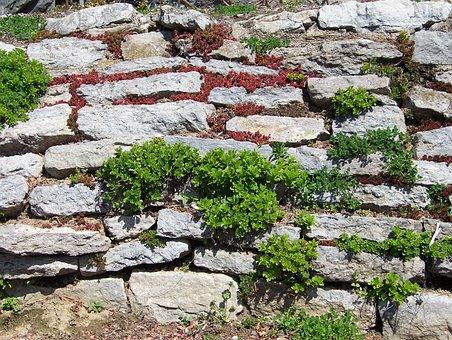 Stonewall, Border, Enclosure, Plants, Stone, Wall