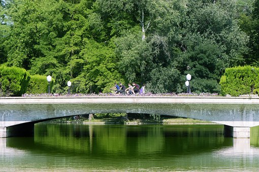 Bridge, Park, Cyclists, Trees, Lake, Water, Nature