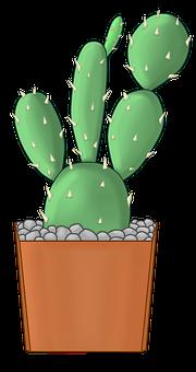 Cactus, Thorny, Plant, Green, Flowerpot, Nature, Botany