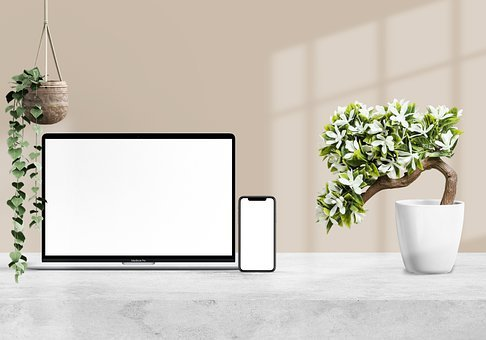 Table, Laptop, Smartphone, Mobile Phone, Flower, Plant