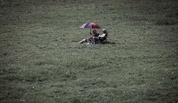 Couple, Umbrella, Field, Parasol, Meadow, Man, Woman