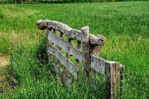 Wood Fence, Fence, Meadow, Grass, Drenthe, Landscape