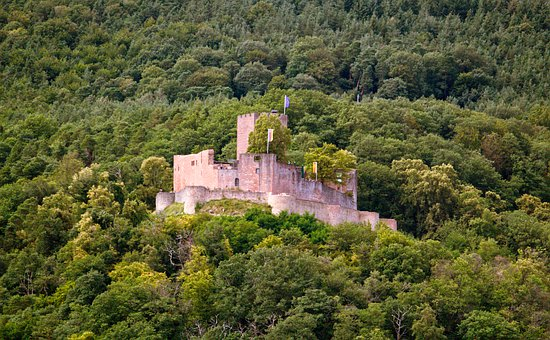 Castle, Fort, Forest, Sachsen, Knight, Historically