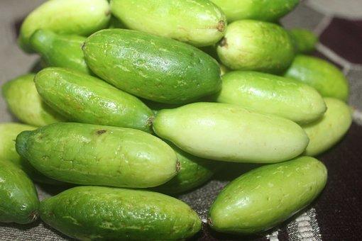 Potato, Vegetable, Harvest, Coccinia, Tendli