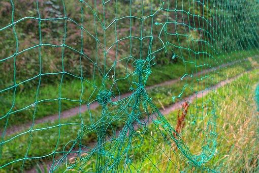 Net, Goal, Hole, Knots, Target, Grass, Field, Corner