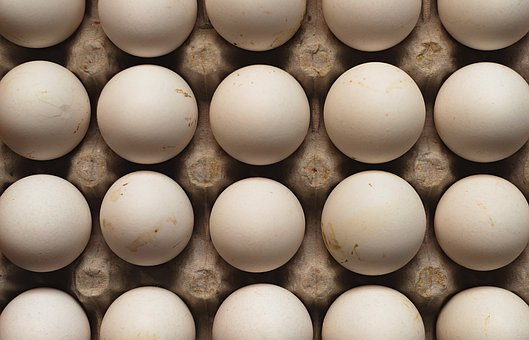 Eggs, Hen, Food, Chicken, Poultry, Shell, Diet