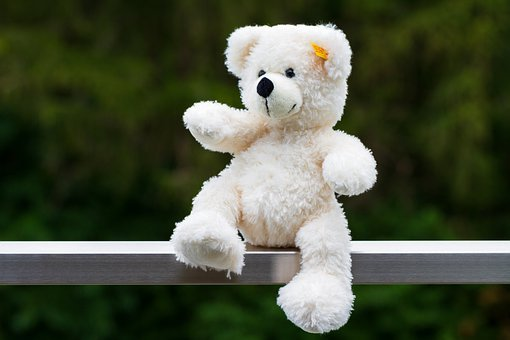 Teddy Bear, Stuffed Animal, Soft Toy, Toy, Plush