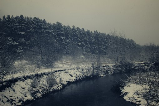 Forest, Trees, Snow, River, Winter, Water, Ice, Cold