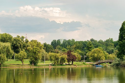 Lake, Water, Trees, Park, Bridge