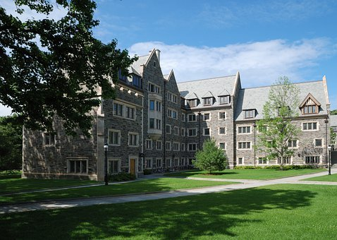 Campus, Princeton, Building, Lawn, Green, Stone