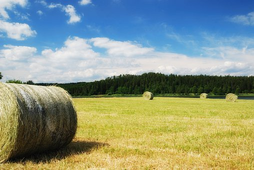 Straw, Sweden, Pile, Round, Farm, Field, Agriculture
