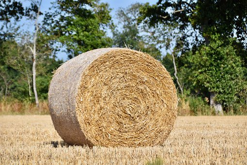 Straw, Fields, Thatch, Agriculture, Wheat, Summer