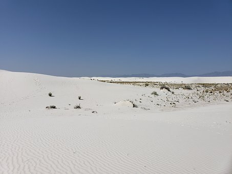 Desert, Sand, Weeds, Plants, White Sand