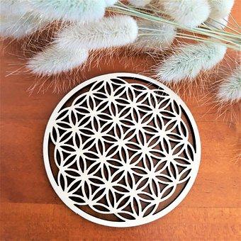 Flower, Geometry, Decoration, Balance, Protection