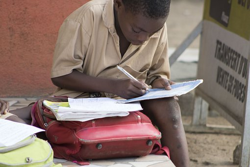 Child, Boy, Student, School, Books, Notes, Learning