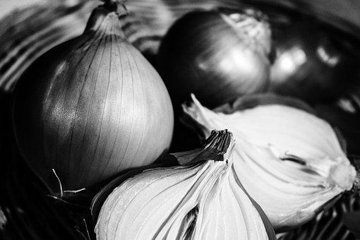 Onion, Vegetables, Harvest, Organic, Natural, Fresh