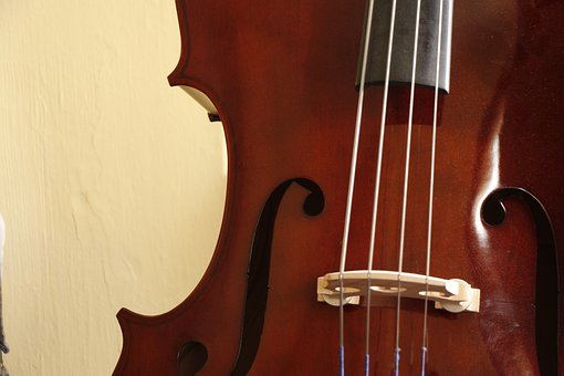 Violin, Strings, Instrument, Bass, Musical, Double Bass