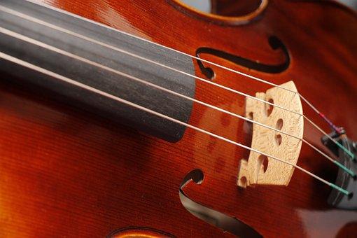 Viola, Violin, Instrument, Musical Instrument